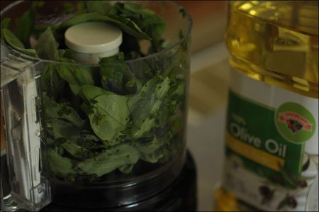 Basil in food processor