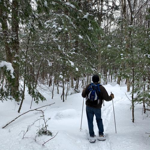 Ken_snowshoeing2020
