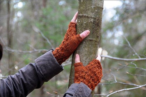 Fallberry Mitts