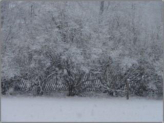 Snow_again_2