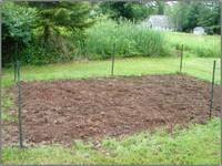 Dirt_garden