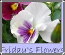 Friday_flowers_2