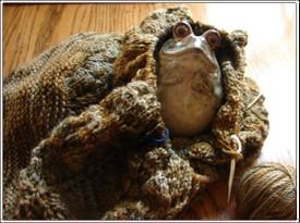 Wool_peddler_shawl