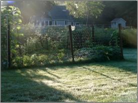 September_garden_2