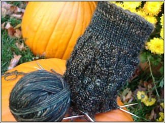Roasted_chestnut_cardigan_sock