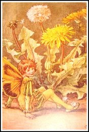 Dandelion_fairy