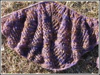 Purpleshawl3